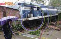 (粵)火車頭隊穿牆  直插小區停車場