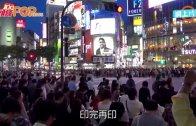 (粵)陸羽仁:  內地泡沫救市