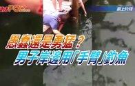 (粵)愚蠢還是勇猛?男子岸邊用手臂釣魚
