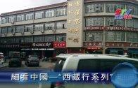 細看中國—西藏行系列 (一)