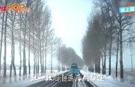 (粵)劉德華榮歸 唱埋央視春晚主題曲