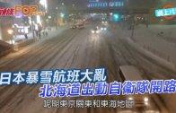 (粵)日本暴雪航班大亂 北海道出動自衞隊開路