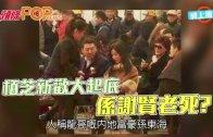 (粵)栢芝新歡大起底 係謝賢老死?