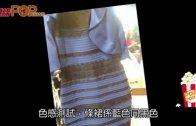 (粵)藍黑定白金?  一條裙玩死全世界