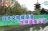 (粵)日本文物被潑油 世界遺產災劫