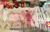 (粵)手術刀劏雞法 內地醫科生完勝
