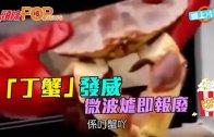 (粵)「丁蟹」發威 微波爐即報廢