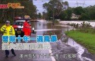 (粵)雪梨十年一遇風暴 損失過百萬澳元