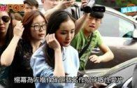 (粵)楊冪黑面現身派出所 北京立案調查