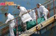 (粵)地中海湧現難民 爭上船人踩人40死