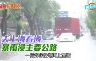 (粵)去上海看海 暴雨浸主要公路