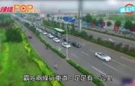 (粵)150架車接新娘 濟南超長車隊