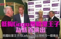 (粵)低胸Gaga撐哈里王子 為慈善演出
