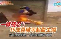 (粵)一樣殘忍! IS成員被吊起監生燒
