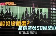 (粵)股災變晒蟹? 趙薇蒸發50億墊底
