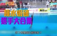 (粵)跳水蝦碌選手大合集
