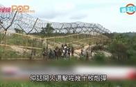 (粵)北韓邊界開火 南韓還擊幾十炮