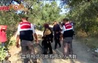(粵)希臘水域大海難 難民沉船逾30人死