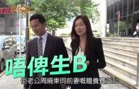 (粵)翠翠老公呻醋唔俾生B  無被贍養訴訟影響