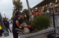 視頻轉載:Stockton士德頓警方暴力拘捕亂過馬路青年