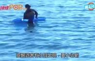 (粵)蘇梅島暗藏殺機 水母刺死廿歲德女
