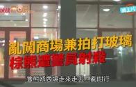 (粵)亂闖商場兼拍打玻璃  棕熊遭警員射殺