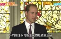 (粵)威廉王子講普通話 籲杜絕走私野生動物