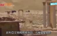 (粵)俄首出軍艦導彈空襲   IS再炸敘利亞古城