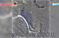 (粵)俄狂襲敘利亞擊IS 傳禍及平民逾30死