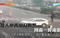(粵)河南漢西瓜刀狂捅 警察一死兩傷
