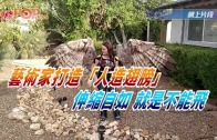 """(粵)藝術家打造""""人造翅膀""""伸縮自如 就是不能飛"""