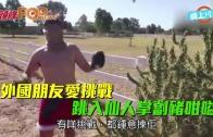 (粵)外國朋友愛挑戰  跳入仙人掌劏豬咁嗌