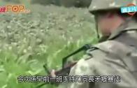 (粵)武警荷槍實彈片曝光  騷槍械晒兵力