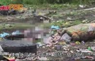 (粵)俄羅斯貨機南蘇丹墜毀  至少40人死亡