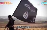(粵)法美俄加強炸IS 勢用盡手段殲滅