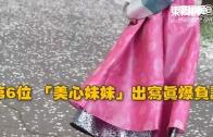 (粵)2015年十大爆seed o靚模(1)