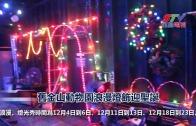 舊金山動物園浪漫燈飾迎聖誕