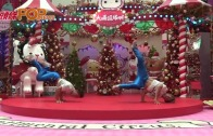 (粵)日狂舞兄弟跳到港 break dance陪你過聖誕