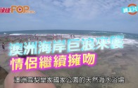 (粵)澳洲海岸巨浪來襲  情侶繼續擁吻