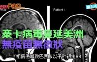 (粵)寨卡病毒蔓延美洲 無疫苗無徵狀