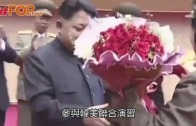 (粵)美再派F-22機飛過  向北韓下馬威