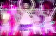 向蕙玲《心愛的侶伴》MV