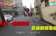 (粵)大叔一個迴旋踢  惡霸瞬間龜縮