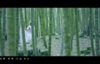 蘇運瑩《冥明》MV