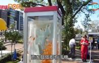 (粵)電話亭冇人用?  大阪改造養金魚