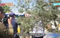 (粵)抗議遣返難民  男人想舉B掟警察