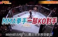 (粵)MMA拳手一腳KO對手