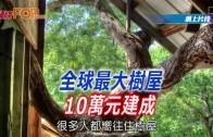 (粵)全球最大樹屋 10萬港元建成