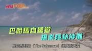 (粵)巴哈馬自駕遊  探索隱秘沙灘