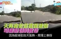(粵)天降南蛇落擋風玻璃  司機嚇到叫救命